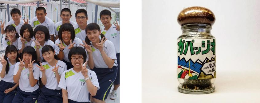 佐賀商業高校とグリーンラボが、佐賀産バジルで商品を共同開発!