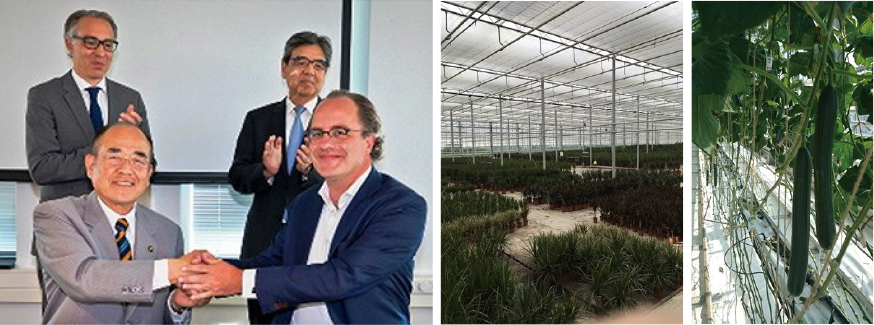 バイオエコノミー取り組みのため、 オランダ政府機関と覚書を結ぶ。